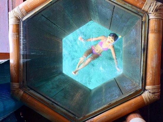 Thulhagiri Island Resort: Your private viewing underwater world!