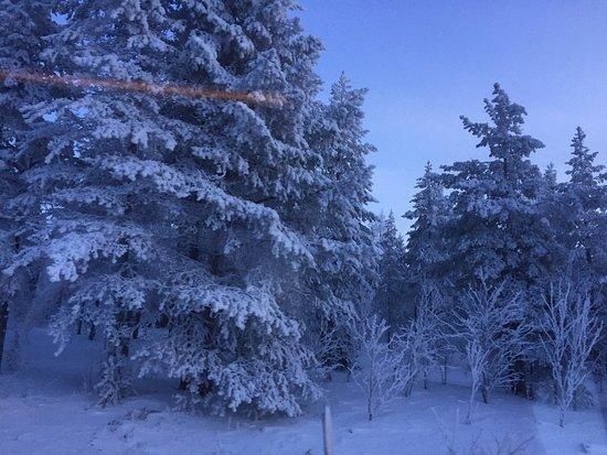 Lapland Vuollerim Welcomes You: photo3.jpg
