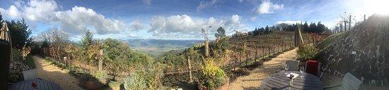 Barnett Vineyards: photo0.jpg