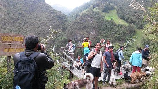 Tungurahua Province照片