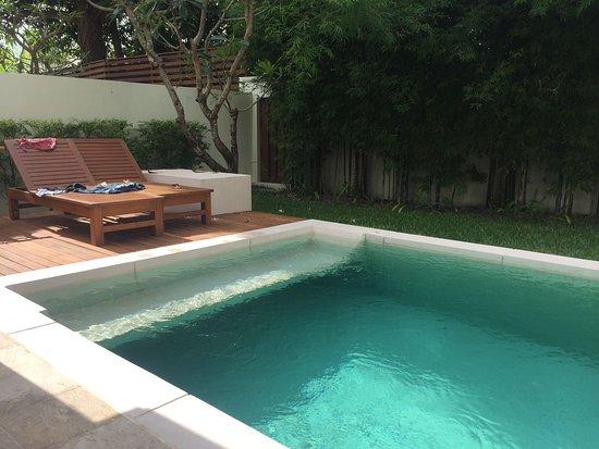 Pool - SALA Samui Choengmon Beach Resort Photo
