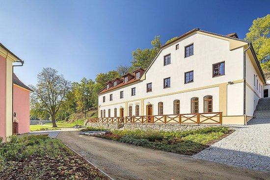 Zamek Mitrowicz