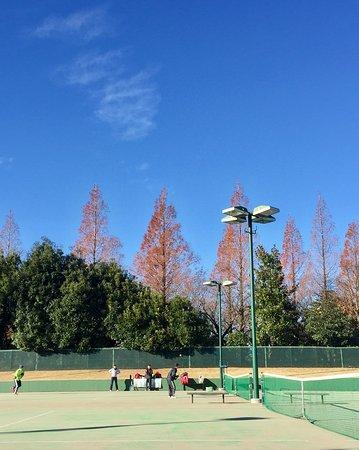 テニスコート、ドッグラン