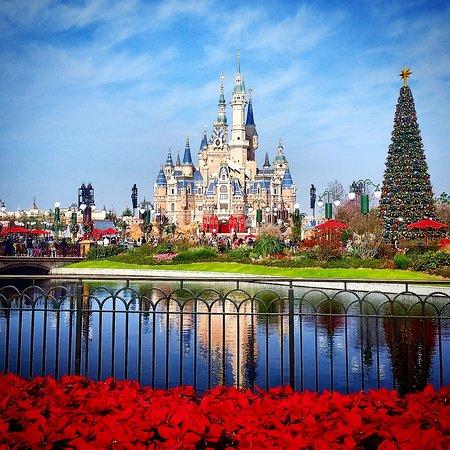 christmas feels at shanghai disneyland - Disneyland In Christmas