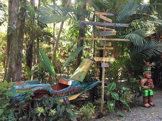 Congo Bongo Ecolodges Costa Rica: Llegada al hotel Congo Bongo