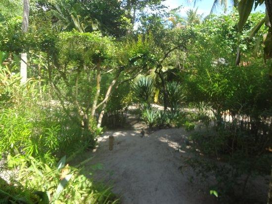 Morere, BA: Jardim
