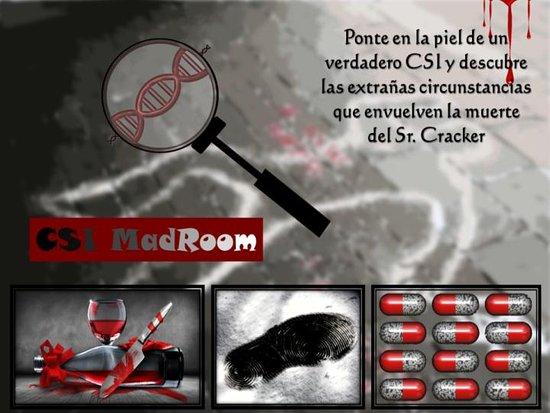 CSI MadRoom