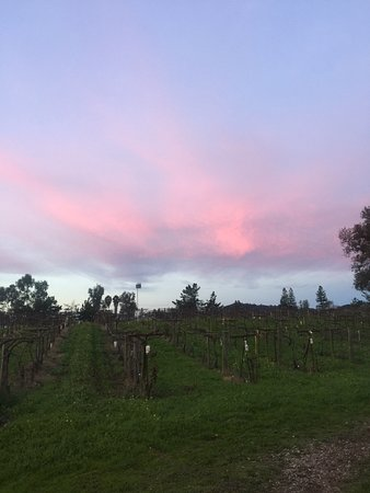 Healdsburg, Californien: December at Acorn