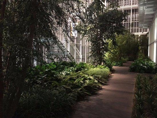 Il giardino d 39 inverno di notte foto di piano35 torino - Il giardino d inverno ...