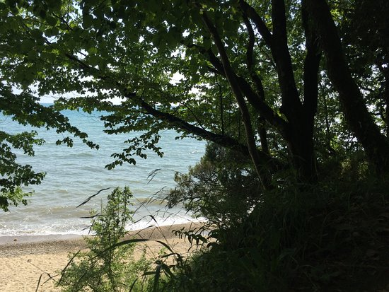 Myussera, جورجيا: вид на море из леса
