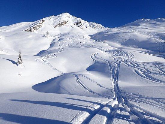 Mustang Powder : Bluebird conditions last week at Mustang, still plenty of great snow!
