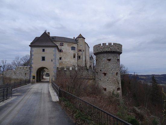 Loosdorf, Avusturya: Burg Flankenstein entrance - I think the tower and crenellations are recent