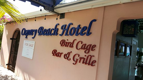 Bird Cage Restaurant : The Osprey and Bird Cage are easy to find.