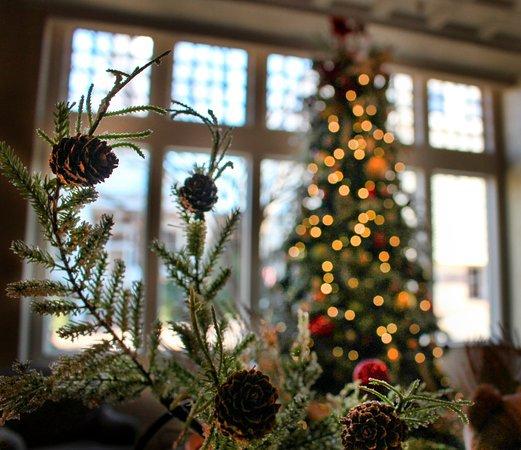 Greeneville, TN: Lobby Christmas tree