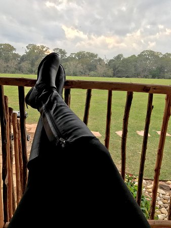 BlissWood Bed and Breakfast Ranch: Life on the ranch