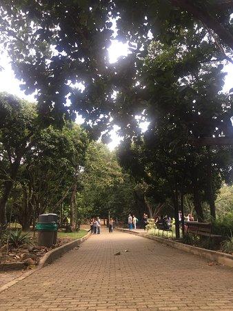 Jardin Botanico de Medellin: photo0.jpg