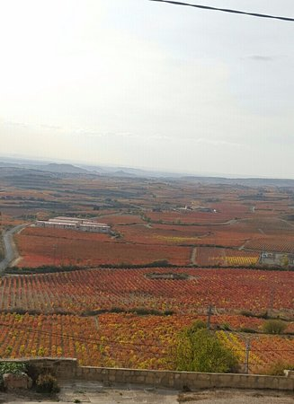 La Rioja, Spanien: Beautiful view of Rioja