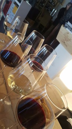 La Rioja, Spanien: Wine tasting with variety selection of interesting Rioja wines