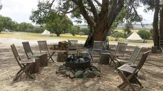 the campfire area picture of french island glamping. Black Bedroom Furniture Sets. Home Design Ideas