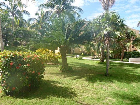 Melia Las Americas: the gardeners keep the grounds beautiful