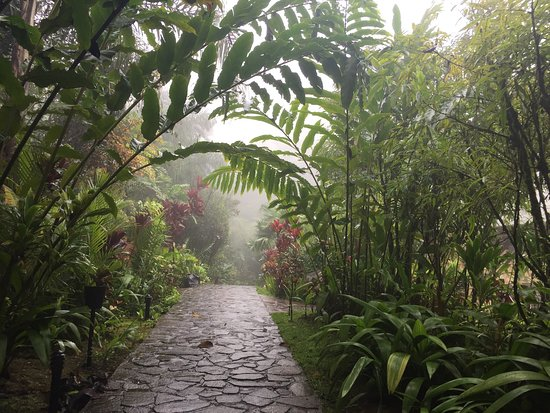 Rio Celeste Hideaway Hotel: Beautiful walkways