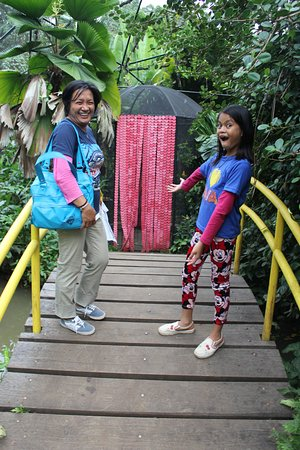 Malagos Garden Resort: Butterflies again