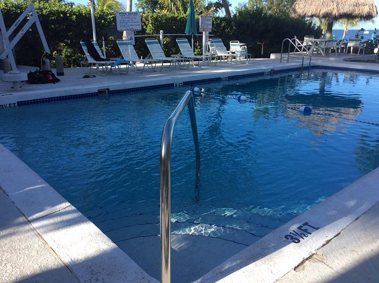 Amoray Dive Resort: Pool looks nothing like their website photos, not heated either