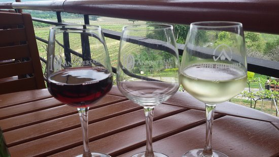 The Sala: Wines
