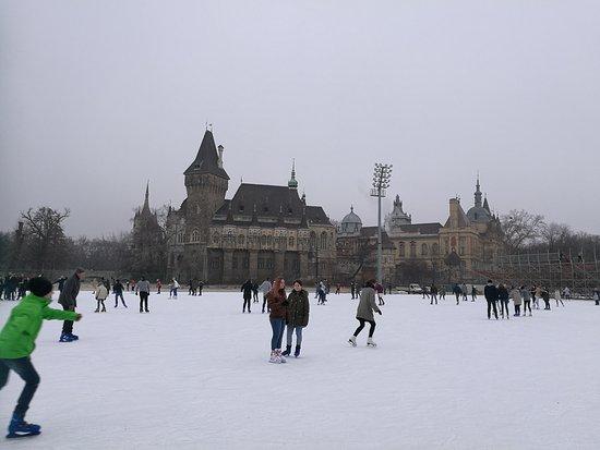 Varosligeti Ice Skating Rink
