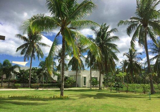 The Beach Village: Tropical garden souround the Coconut RestaurantTropical garden souround the Coconut Restaurant