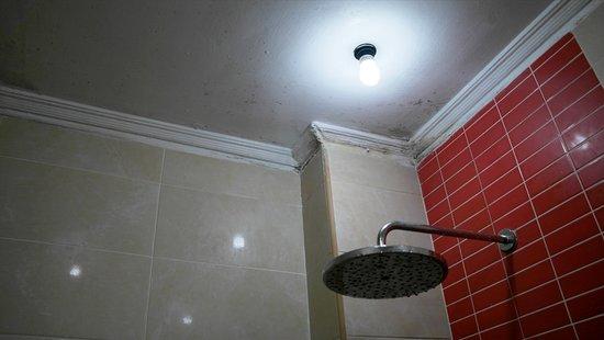 Badkamer vol met schimmel - Bild von Hotel Inglaterra, Havanna ...