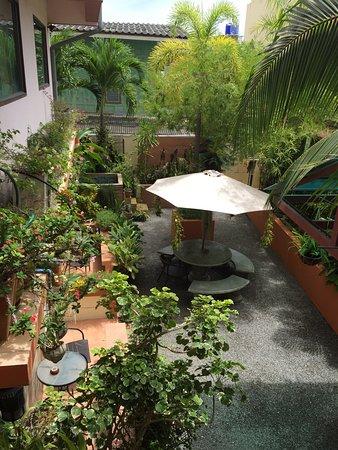Sofia Hotel: Nice garden in back area of Sofia