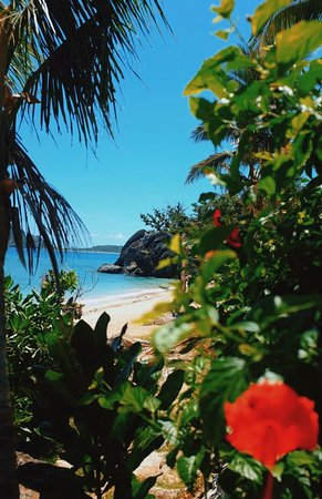 Waya Lailai, Fiji: photo3.jpg