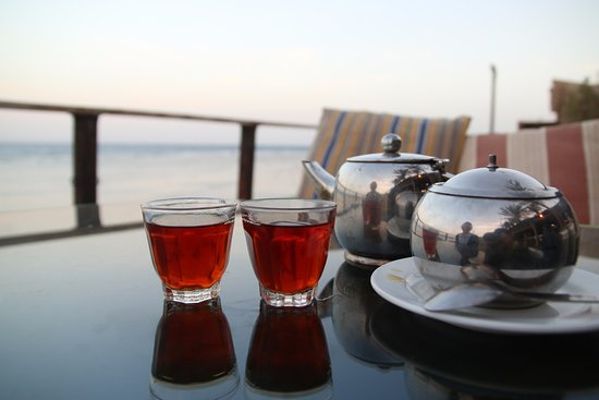 Penguin Village: black tea at seaside