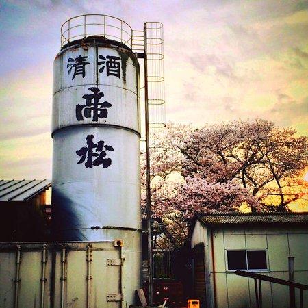 Matsuoka Brewing Co.