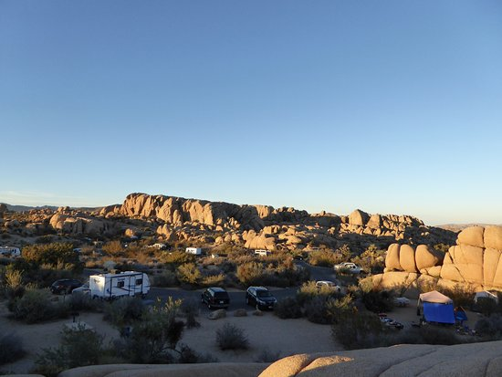 Jumbo Rocks Campground: Campingoverzicht