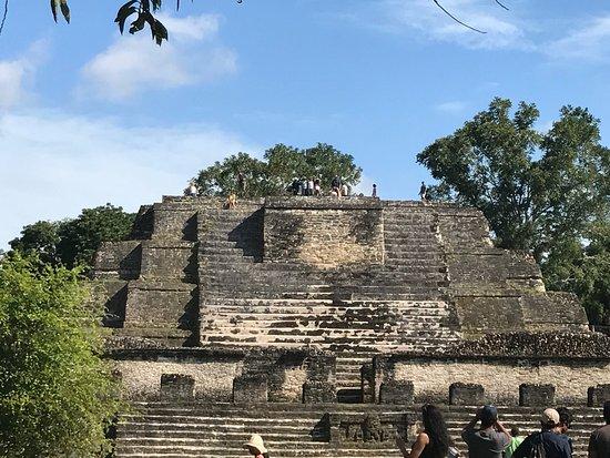 Altun Ha Maya Site and Belize Zoo Combo Tour: photo1.jpg