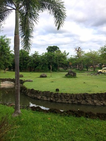 Mara River Safari Lodge: photo0.jpg