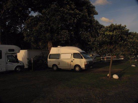 Papa Aroha Holiday Park 이미지
