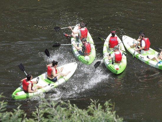 Vidigueira, Portugal: Descida de rio em Kayak