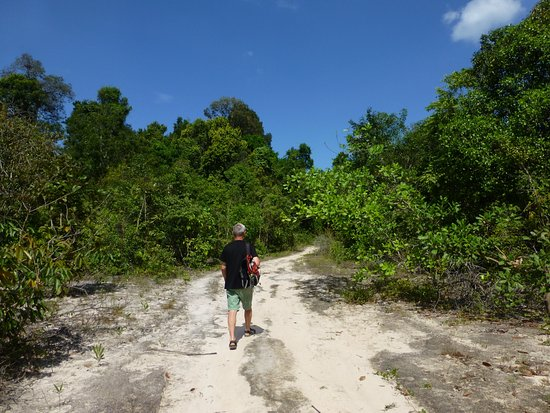 Phu Quoc Island, Vietnam: Sandy trail through forest