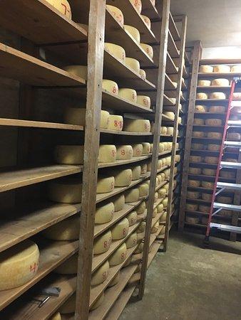 Matos Cheese Factory: photo1.jpg
