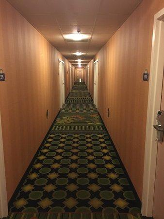 Days Inn Chattanooga/Hamilton Place: photo9.jpg