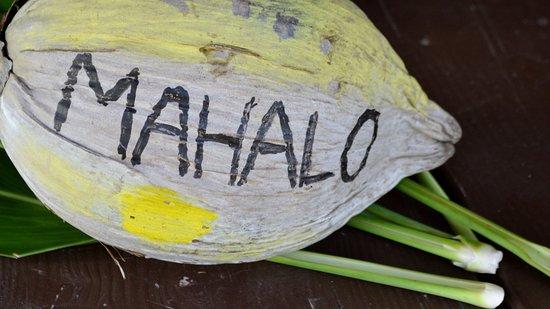 Kamokila Hawaiian Vllage: Mahalo