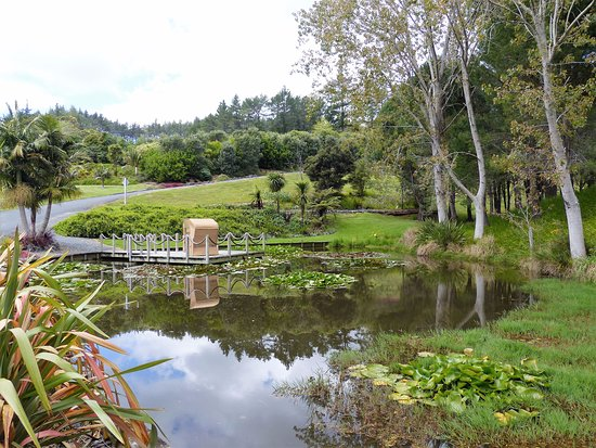 Landscaped Gardens around Paroa Bay Winery