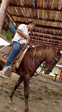 Huacho, Peru: Show con caballos de paso