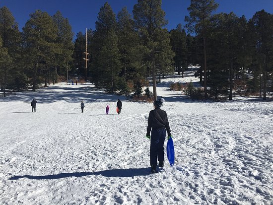 Taos County, NM: Plenty of packed snow down this hill to sled. And best of all it's FREE!!