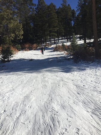 Taos County, Nuevo México: Plenty of packed snow down this hill to sled. And best of all it's FREE!!