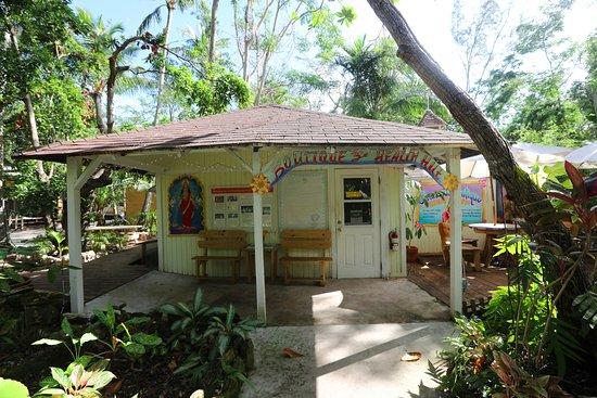 Sivananda Ashram Yoga Retreat: Wellness Boutique