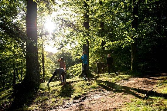 Rostanga, สวีเดน: Morning sun at a morning run.